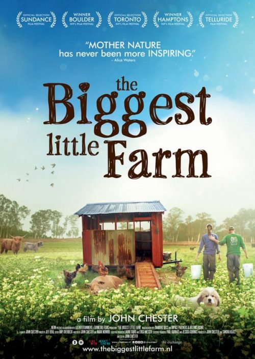 The biggest little farm film